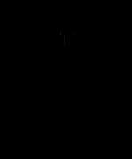 123870789_195140282_Turnschuhheizer-Waldlauf